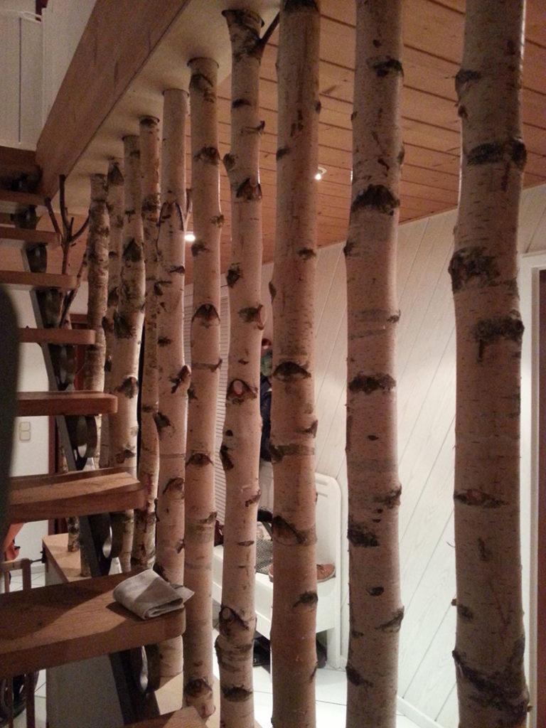 Birkenstämme als Treppenwand
