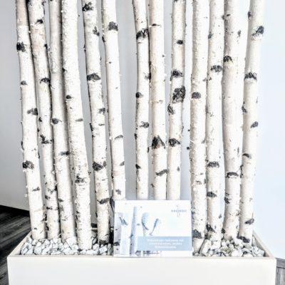 Weiße Birkenstamm-Garderobe von Birkendocihre moderne Inneneinrichtung 3 m